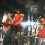 第二十四夜 – キノコパワーで蛹化するの巻(2009.11.08)